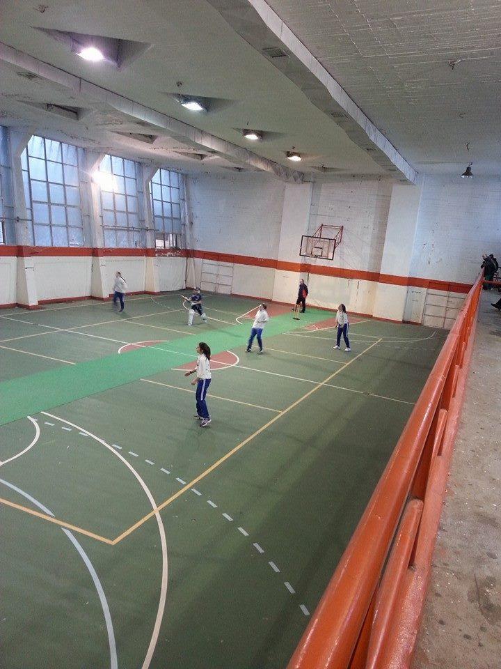 Πανελλήνιο Πρωτάθλημα Κρίκετ